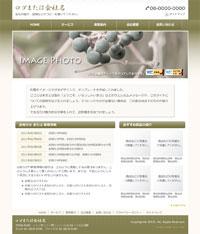 日本の伝統色「海松色(みるいろ)」